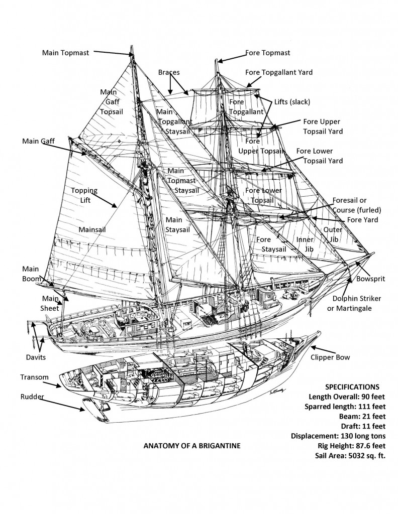 Anatomy of a Brigantine